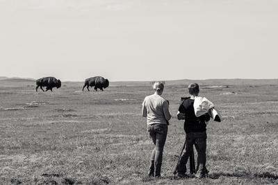 Wild Buffalo Wet Plate Collodion