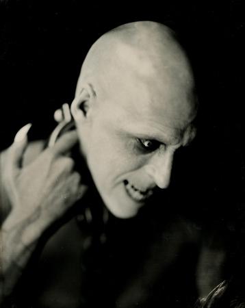 Nosferatu, Dracula